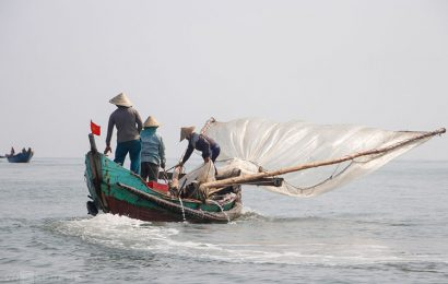 Fishermen in central Vietnam are enjoying a bumper shrimp season