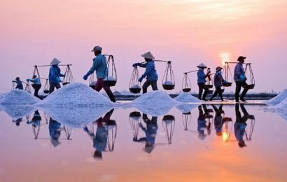 Hundreds of families in Bac Lieu entire lives are spent harvesting salt