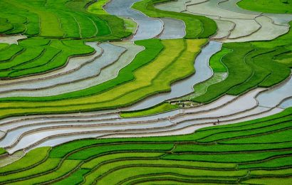 The magnificence of the Mu Cang Chai terraced rice fields in Yen Bai
