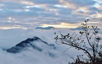 Bach Moc Luong Tu in Lao Cai is a perfect venture for adventurers