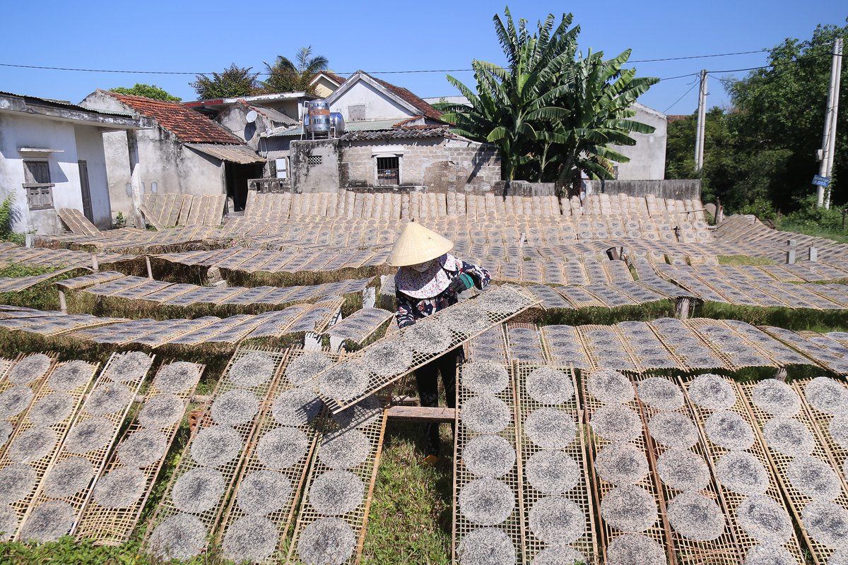 Making-rice-paper-in-Tan-An-a-traditional-village-in-Quang-Binh-Province-1